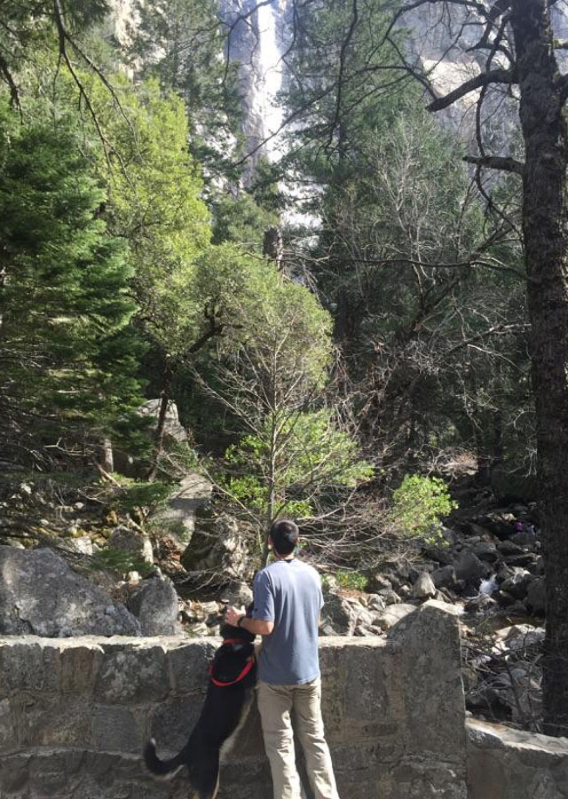 Hiking to Bridalveil Falls in Yosemite with my dog.