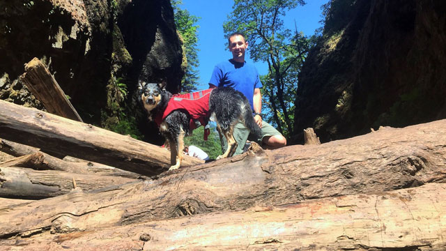 Hiking Oneonta Gorge With My Dog