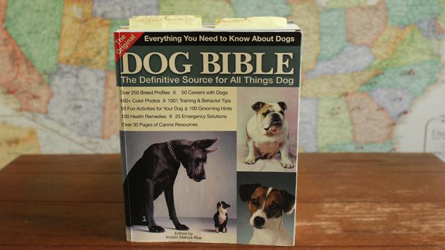 dog-bible-640x360